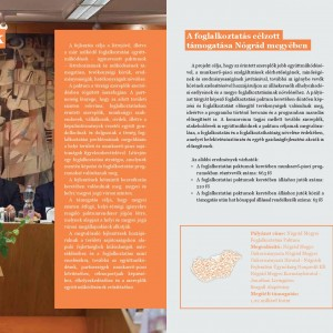 A_TOP_felidoben-page-016
